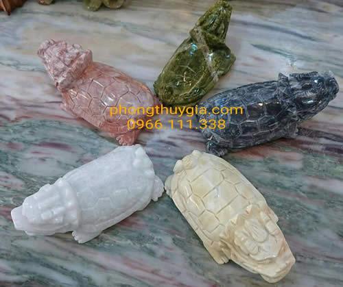 rùa ngũ phương